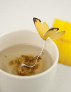 herbaciany_motyl_design_kokopelia_1