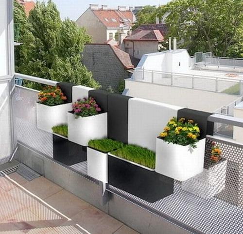 Miejski Ogród Kokopelia Design Kokopelia Design