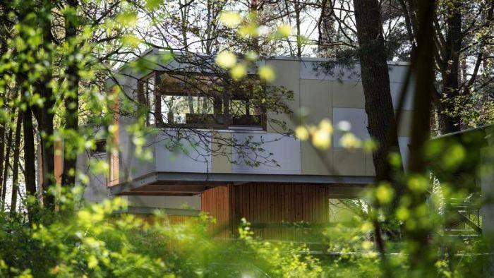 jak_zbudować_dom_na_drzewie_kokopelia_ (10)