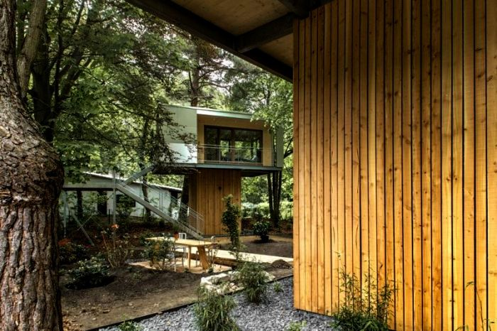 jak_zbudować_dom_na_drzewie_kokopelia_ (9)