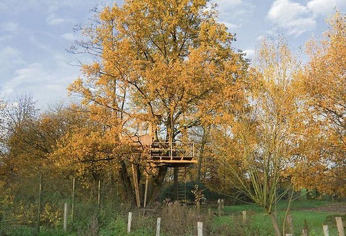 jak_zbudować_dom_na_drzewie_kokopelia_b (5)