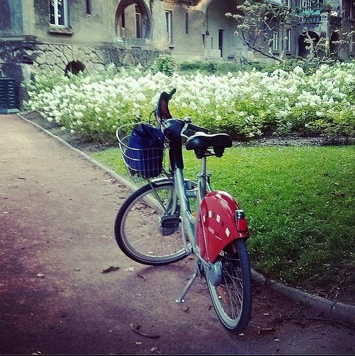 Komunikacja_miejska_w_Lyonie_kokopelia_a